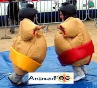 location costume de sumos enfants